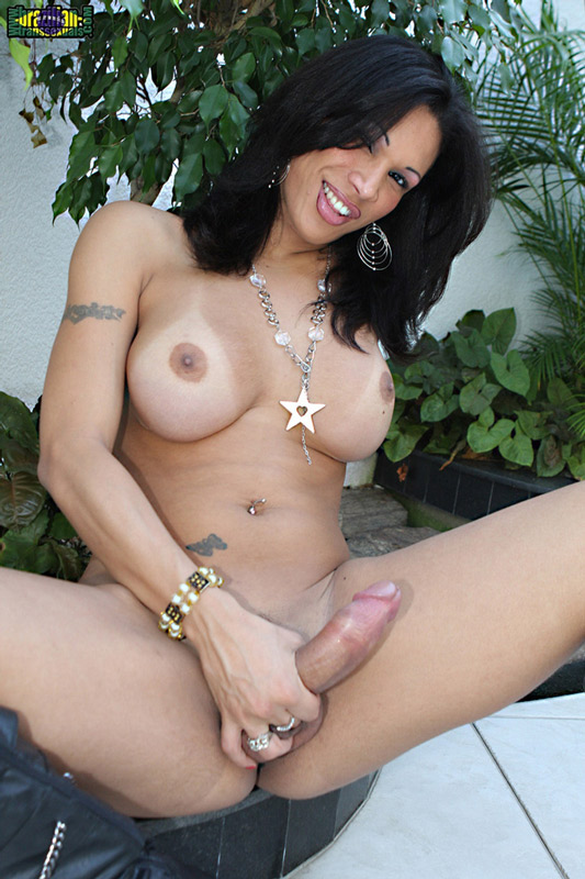Puerto Rican Shemales Tree Transexual Movies